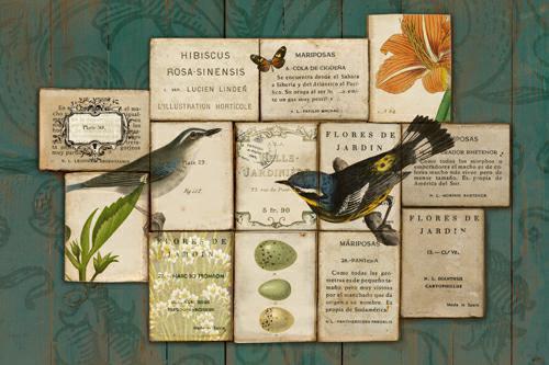 Birds of the Garden von Sue Schlabach