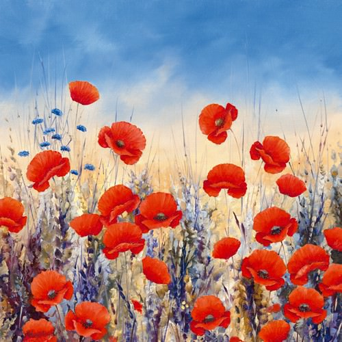 Sunset Poppies von Hilary Mayes