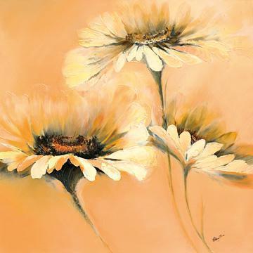 Apricot Summer I von Elena Filatov