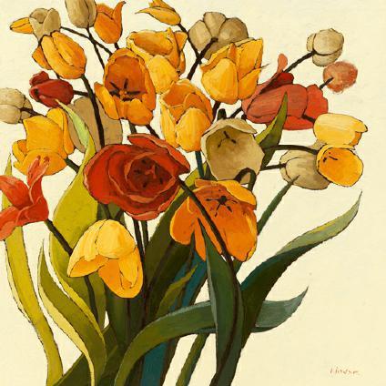 Comogli Colore von Shirley Novak