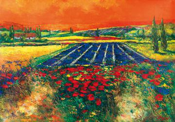 Provence von Madjid