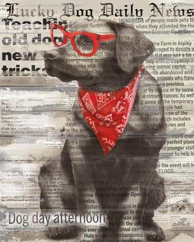Lucky Dog von Carol Robinson
