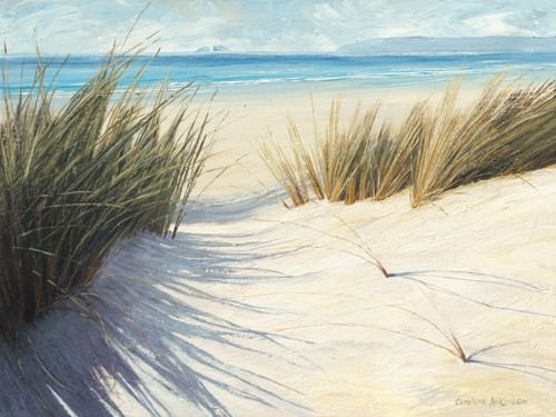 Dune Pathway von Caroline Atkinson
