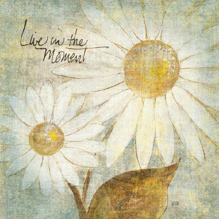 Daisy Do III - Live in the Moment von Chris Paschke