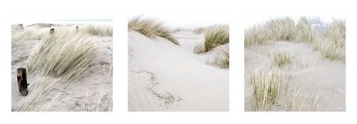 Dunes von Georges-Felix Cohen