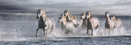 Horses Running at the Beach von Jorge Llovet