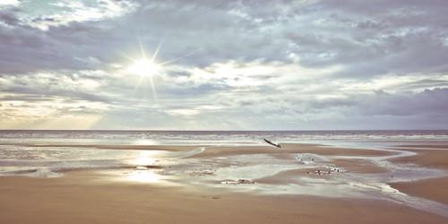 Seascape von Assaf Frank
