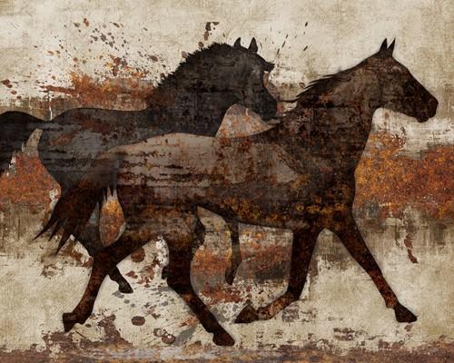 Running Free I von Conrad Knutsen