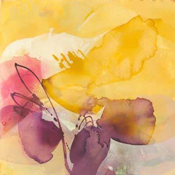 Blossoms von El Witt