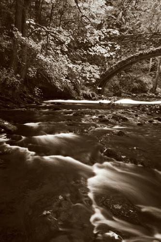 Whatcom Creek von Alan Majchrowicz