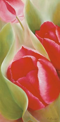 Tulpen I von Annette Schmucker