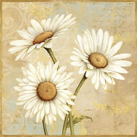 Beautiful Daisies I von Daphne Brissonnet