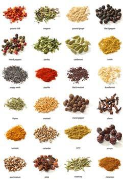 Colorful Spices And Herbs von Jiri Hera