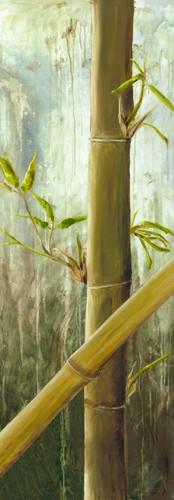 Rainforest I von Maritta Haggenmacher