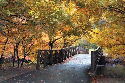Autumn Overpass von Jessica Jenny
